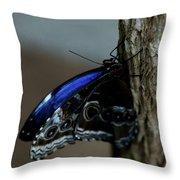 Moment Of Calm Throw Pillow