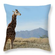 Moment Of Independence Throw Pillow