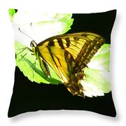 Moment Of Life Throw Pillow