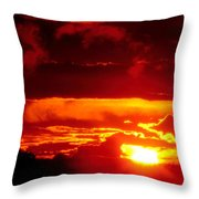 Moment Of Majesty Throw Pillow