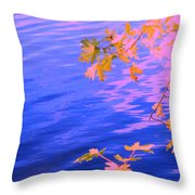 Moment Of Quiet  Throw Pillow