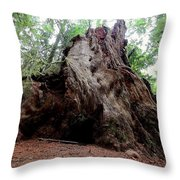 Moments In Time Trail Throw Pillow