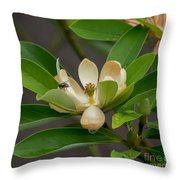 Moments On The Magnolia Throw Pillow