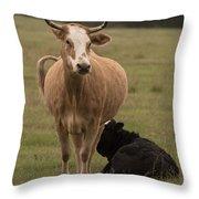 Momma Cow Throw Pillow
