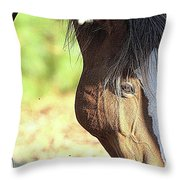 Momma Horse  Throw Pillow