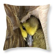 Mommy's Warmth Throw Pillow