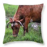 Mona The Cow Throw Pillow