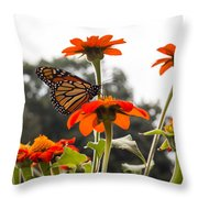 Monacrch Butterfly On A Flower Throw Pillow
