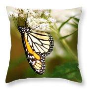 Monarch 2 Throw Pillow