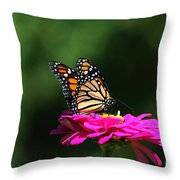 Monarch 7 Throw Pillow