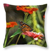 Monarch 8 Throw Pillow