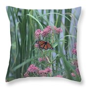 Monarch And Pink Throw Pillow