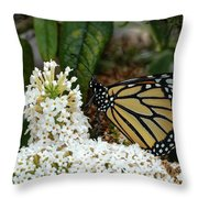 Monarch And The Butterfly Bush  Throw Pillow