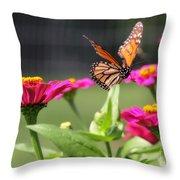 Monarch Approaching Zinnia Throw Pillow