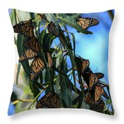 Monarch Blues Throw Pillow