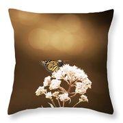 Monarch Butterfly 4 Throw Pillow