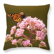Monarch Butterfly 5 Throw Pillow