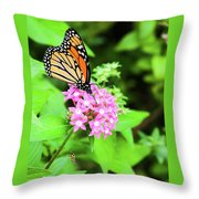 Monarch Butterfly And Honey Bee Throw Pillow