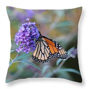 Monarch Butterfly And Purple Flowers Throw Pillow