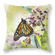 Monarch Butterfly Blank Note Card Throw Pillow