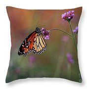 Monarch Butterfly In Autumn 2011 Throw Pillow