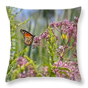 Monarch Butterfly In Joe Pye Weed Throw Pillow