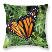 Monarch Butterfly In Lush Leaves Throw Pillow