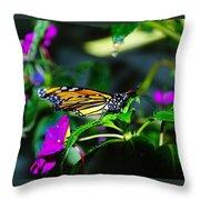 Monarch Buttefly Throw Pillow