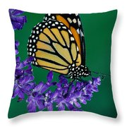 Monarch Butterfly On Flower Blossom Throw Pillow