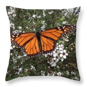 Monarch Butterfly On New Zealand Teatree Bush Throw Pillow