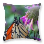 Monarch Butterfly Posing Throw Pillow