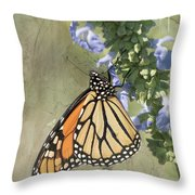 Monarch Butterfly Textured Background Throw Pillow