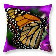 Monarch Dreams Throw Pillow