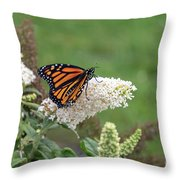 Monarch On A Butterfly Bush Throw Pillow