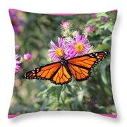 Monarch On Blanket Flower Throw Pillow