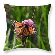 Monarch On Joe Pye Throw Pillow