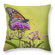 Monarch On Pink Flower Throw Pillow