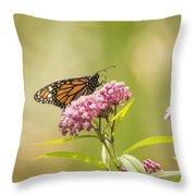 Monarch On Swamp Milkweed 2014-1 Throw Pillow