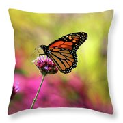 Monarch Song Throw Pillow
