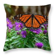 Monarch Spreading Its Wings Throw Pillow
