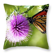 Monarch Thistle Throw Pillow