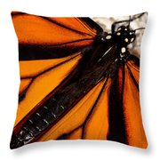 Monarch Triangles Throw Pillow