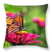 Monarch Visiting Zinnia Throw Pillow