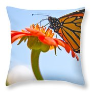 Monarch Working Throw Pillow