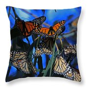 Monarchs In Paradise Throw Pillow