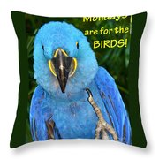 Monday For The Birds Throw Pillow