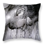 Mondi Interiori Throw Pillow