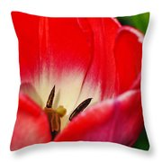 Monet Garden Red Tulip Throw Pillow