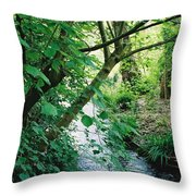 Monet's Garden Stream Throw Pillow