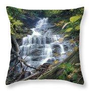 Money Brook Falls Mount Greylock Throw Pillow